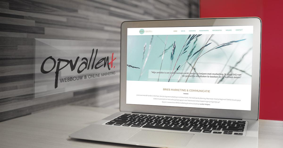 Nieuwe website voor Bries Marketing